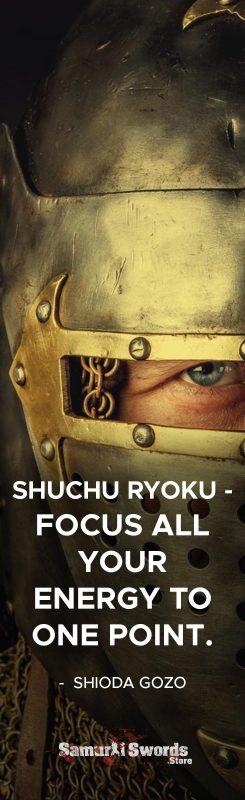 SHUCHU RYOKU - Focus all your energy to one point. - Shioda Gozo