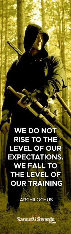 We do not rise to the level of our expectations. We fall to the level of our training. - Archilochus