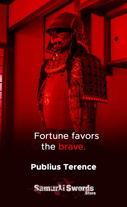 Fortune favors the brave. - Publius Terence