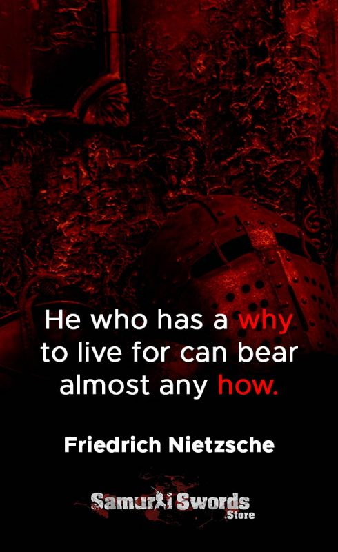 He who has a why to live for can bear almost any how. - Friedrich Nietzsche