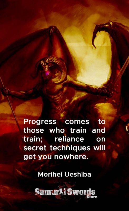 Progress comes to those who train and train; reliance on secret techniques will get you nowhere. - Morihei Ueshiba