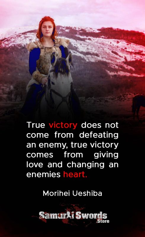 True victory does not come from defeating an enemy
