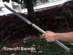 Baton Sword blade